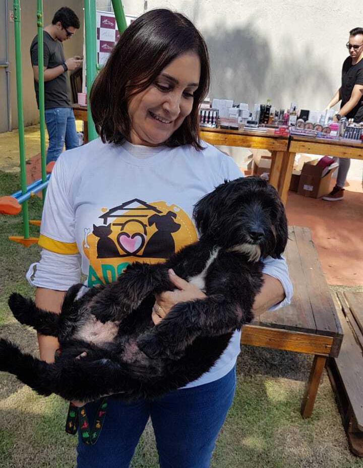 Evento promove a adoção de cães em São José dos Campos
